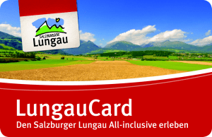 LCard icon